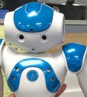 Meet Ricky the Robot!