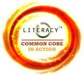 Literacy TA