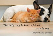"""""""The only way to have a friend is to be one"""""""