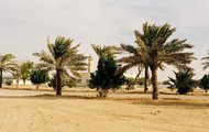 The climate in the middle east is very dry and sandy
