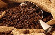 Kickinghorse Coffee!