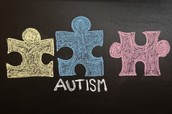 Autism Conference Set for August