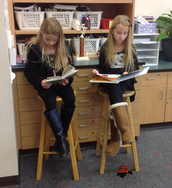 Enjoying our new library books!