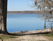 Lake Charlotte, Texas