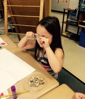 Students in Mrs. Dowdy's class explore the properties of rocks