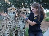 Zoologist ans Wildlife Biologist