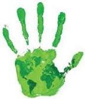 #1 Green
