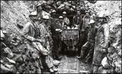 Tin Miners