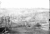 Battle of Bull Run/Manassas