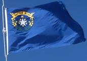 Nevadas State Flag!