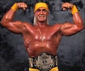 Hulk Hogan's Beautiful Biceps
