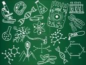 Importancia en la biología.