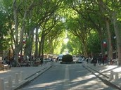 La Cours Mirabeau