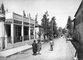 מושבת פתח תקווה 1931