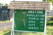 (A)  What is the total population of people and animals in Anatone Washington?