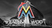 MLB Endorsed