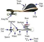 Parts of a Skateboard