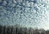 Alto-cumulus Cloud