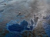 2010 oil spill