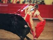 Una fotografía de mi y un toro durante una pelea.