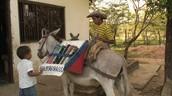 The Biblioburro: Delivering Books Via Donkey