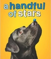A Hanful of Stars