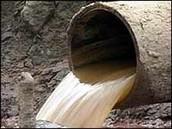 Biomass Sewage