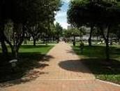 93 park