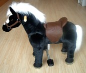 More about the Bell Pony.