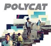 My PolyCat