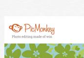 Find PicMonkey