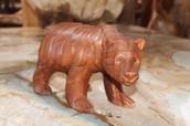 Teak Bear Cub