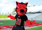 #2 Arkansas State Unversity Main Campus