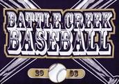 Summer of 2008 Baseball