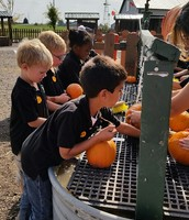 Cleaning our pumpkins
