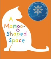 Mango Shaped Space by Wendy Mass