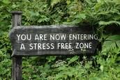 werstressfree