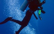 Odd Diver - Limerick