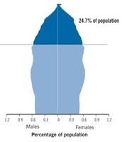 Population Pyramid 2060