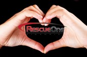 Why You Should Read Rescue One Financial Reviews