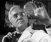 A Brief Summary of the Life of Alexander Fleming