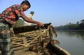 Hunting/ Fishing