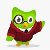 Duolingo voor scholen