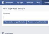 """4. Visit Facebook's """"Debug"""" page"""