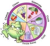 FOOD CYCLE