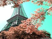 Paris is at its best during the temperate spring months (March to May)