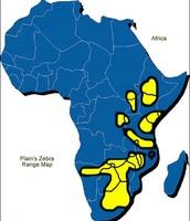 Map of where the Burchell's Zebra lives