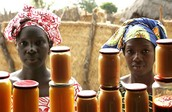 Micro-Enterprise that Women have Developed in the Past