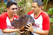 Coca-Cola Donates 28 million dollars