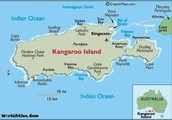 Information On Kangaroo Island